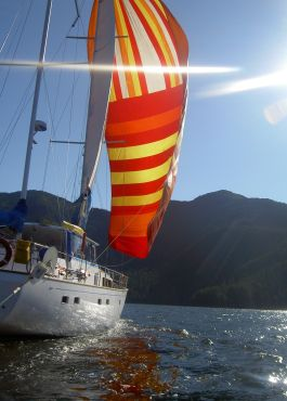 Island Roamer sailing into the sun